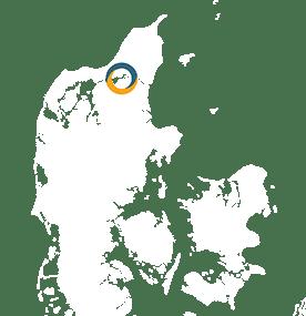 Infomøde-Ålborg-1