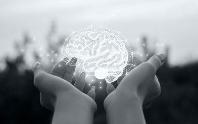 Stop din hjerne, så den ikke står i vejen, når du skal træffe store beslutninger